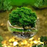 Les objets publicitaires peuvent désormais être écologiques